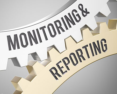 website development and support monitoring reporting