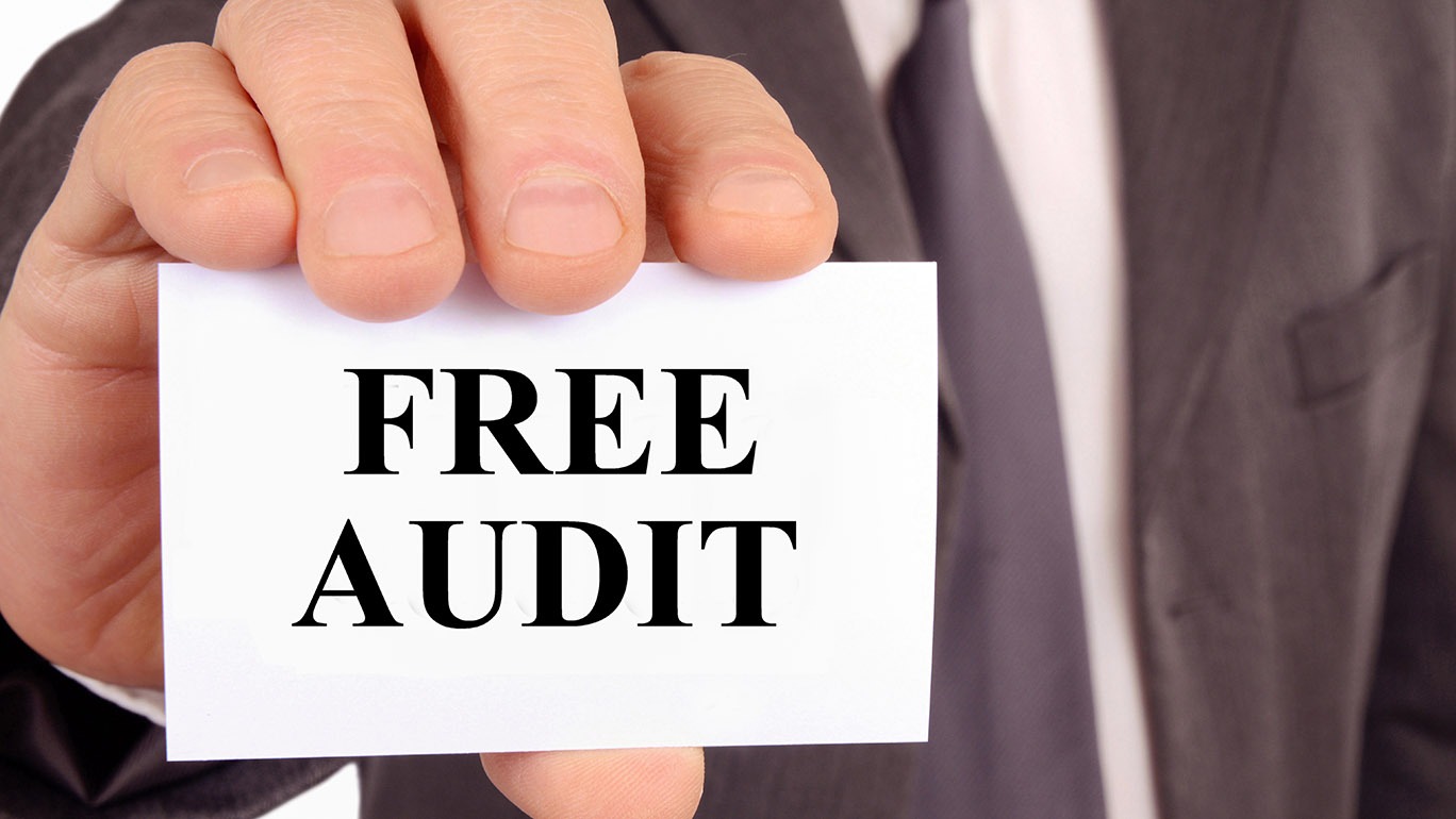 local business free audit
